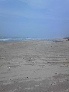 霧に咽ぶ浜でした